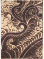 Paklājs SEHER 3D 2654 brown beige B 43.56€ Seher 3D kolekcija Dizaina Paklājs SIA
