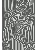 Paklājs METEO Akman platinum A 33.51€ Meteo kolekcija Dizaina Paklājs SIA