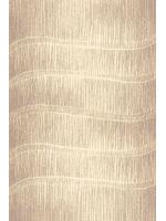 Paklāja celiņš AVANTI Tytus beige  A 18.87€ Paklāju kolekciju celiņi Dizaina Paklājs SIA
