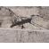Paklājs MIAMI 0129 V 32.79€ Vision, Elite un Miami kolekcijas Dizaina Paklājs SIA