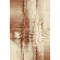 Paklājs Amareno Libra coral 59.59€ Dažādu stilu paklāju kolekcija BCC SIA